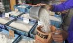 rice vendor